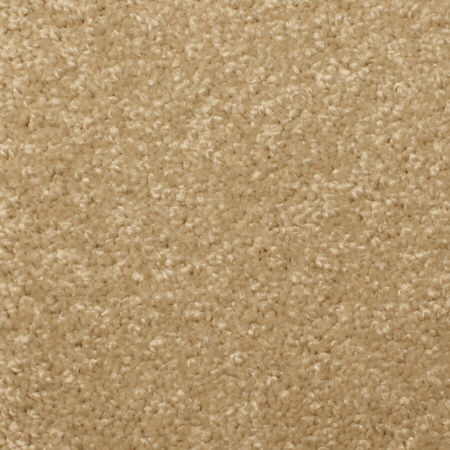 STAINMASTER PetProtect Briarcliffe Hills Beautiful Textured Indoor Carpet