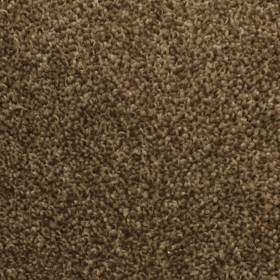STAINMASTER PetProtect Briarcliffe Hills 12-ft W x Cut-to-Length Brocade Textured Interior Carpet