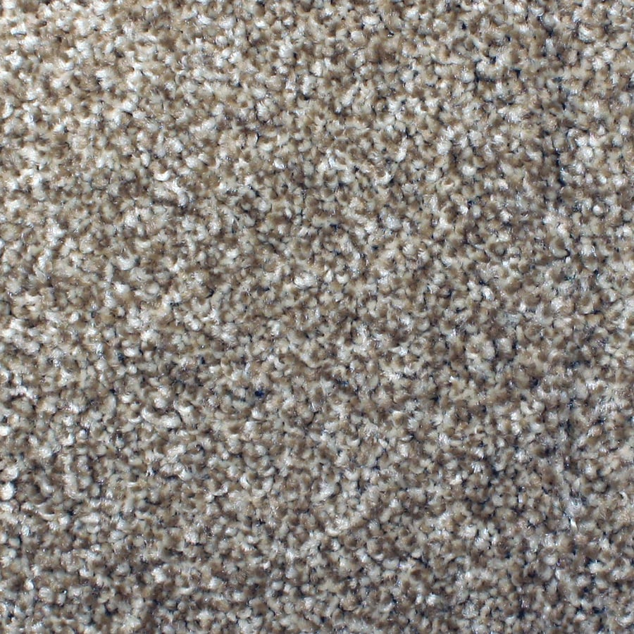 STAINMASTER Petprotect Briarcliffe Hills 12-ft W x Cut-To-Length Dazzling Textured Interior Carpet