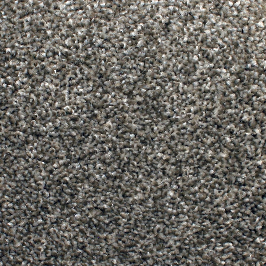 STAINMASTER PetProtect Briarcliffe Hills Filigree Textured Indoor Carpet