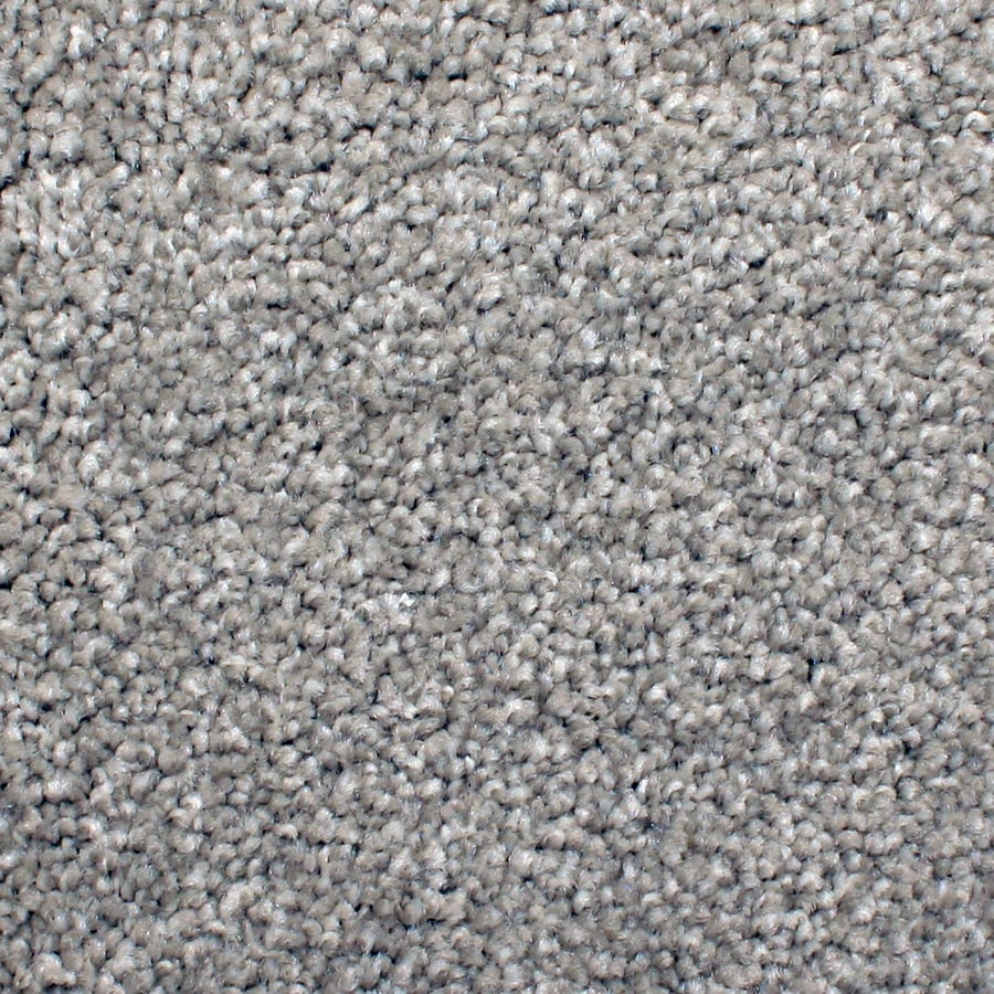 STAINMASTER PetProtect Briarcliffe Hills Pendant Textured Indoor Carpet