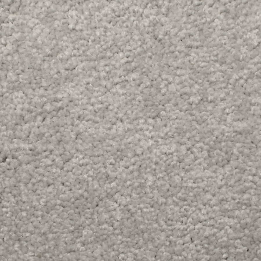 STAINMASTER PetProtect Briarcliffe Hills Vintage Textured Indoor Carpet