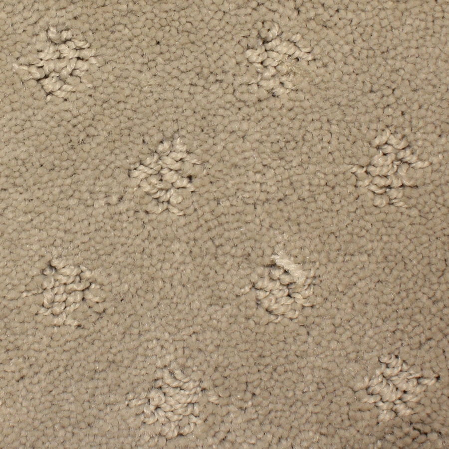STAINMASTER PetProtect Spring Hope 12-ft W x Cut-to-Length Jolie Pattern Interior Carpet