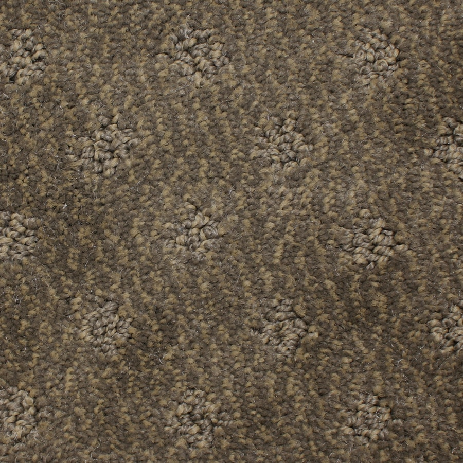 STAINMASTER PetProtect Spring Hope 12-ft W x Cut-to-Length Lace Pattern Interior Carpet