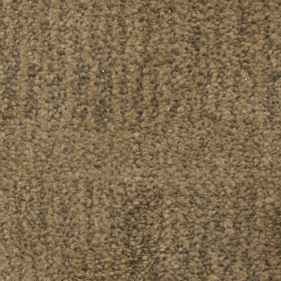 STAINMASTER PetProtect Pilot Point 12-ft W x Cut-to-Length Aurora Pattern Interior Carpet