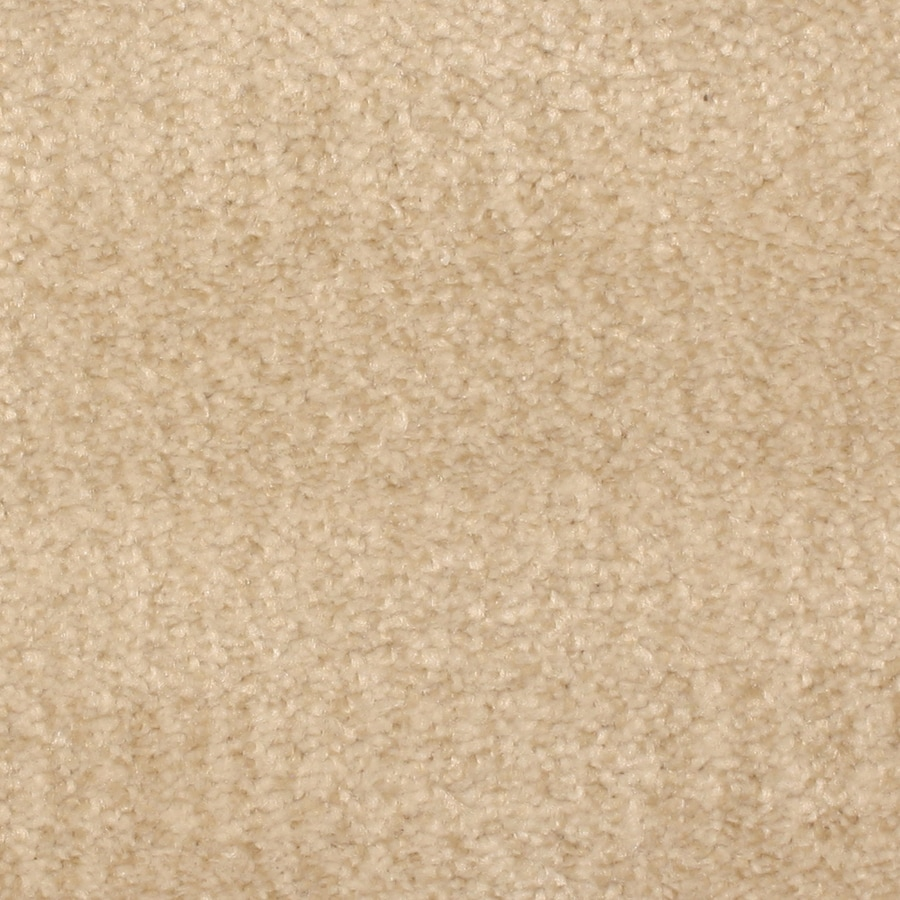 STAINMASTER PetProtect Pilot Point 12-ft W x Cut-to-Length Calm Sea Pattern Interior Carpet