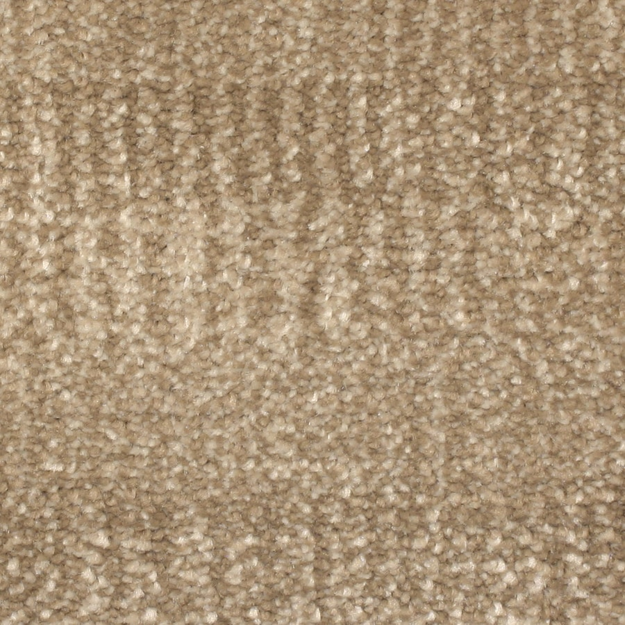 STAINMASTER PetProtect Pilot Point Cascade Pattern Interior Carpet