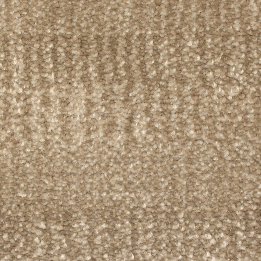STAINMASTER PetProtect Pilot Point Cascade Pattern Indoor Carpet