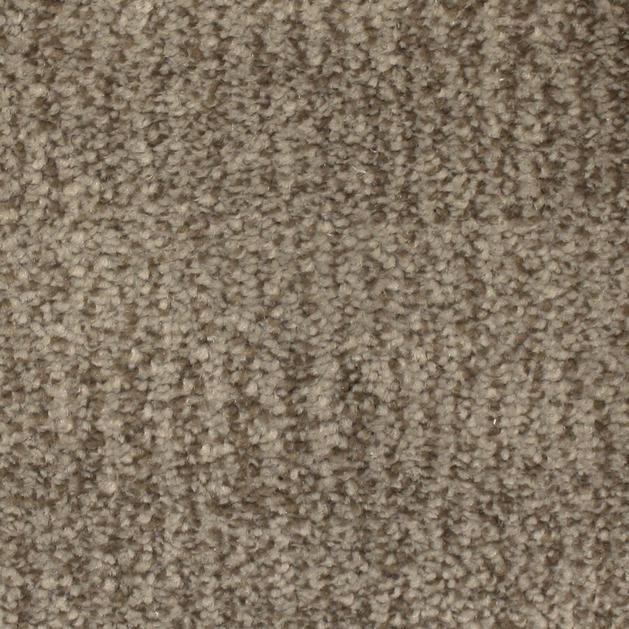 STAINMASTER PetProtect Pilot Point Driftwood Pattern Indoor Carpet