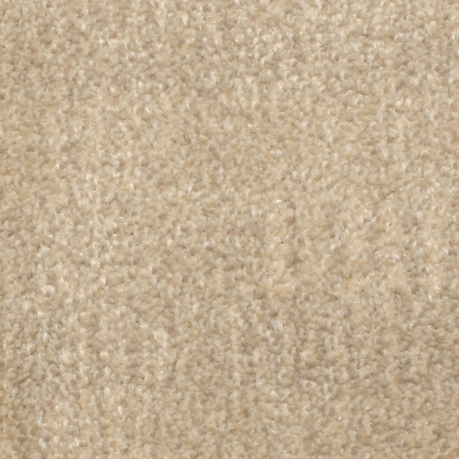 STAINMASTER PetProtect Pilot Point Moonlight Bay Pattern Indoor Carpet