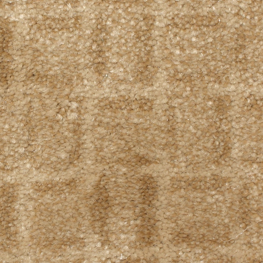 STAINMASTER PetProtect Topsail 12-ft W  x Cut-to-Length Boardwalk Pattern Interior Carpet