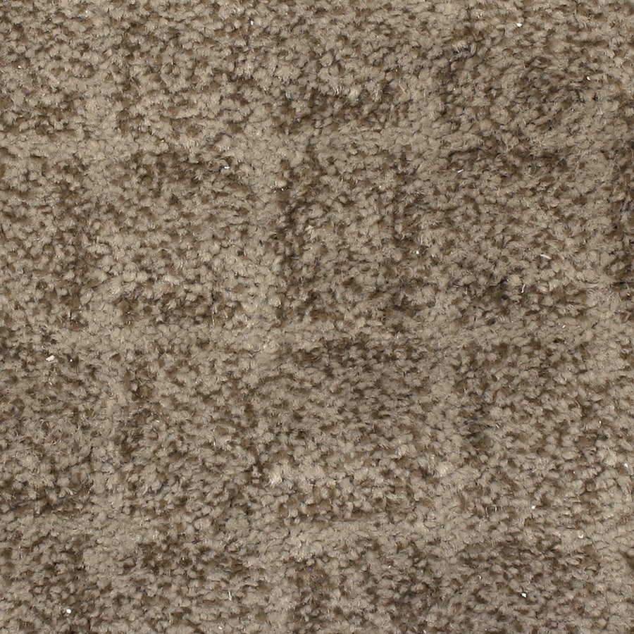 STAINMASTER PetProtect Topsail Driftwood Pattern Interior Carpet