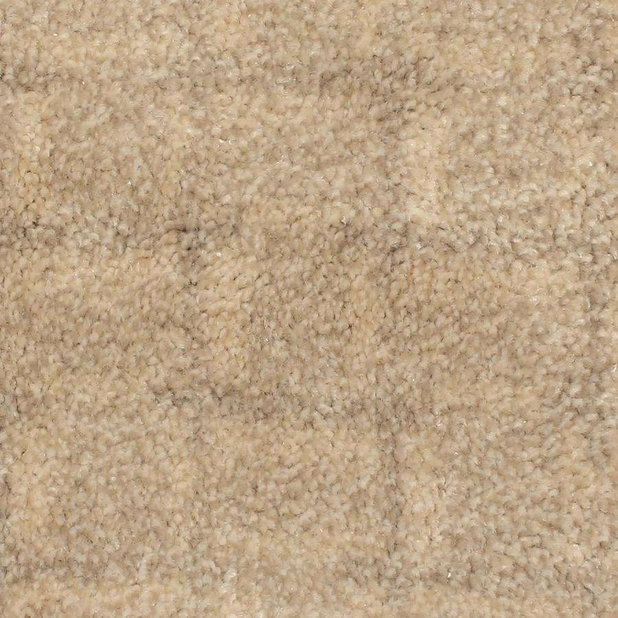 STAINMASTER PetProtect Topsail 12-ft W x Cut-to-Length Moonlight Bay Pattern Interior Carpet