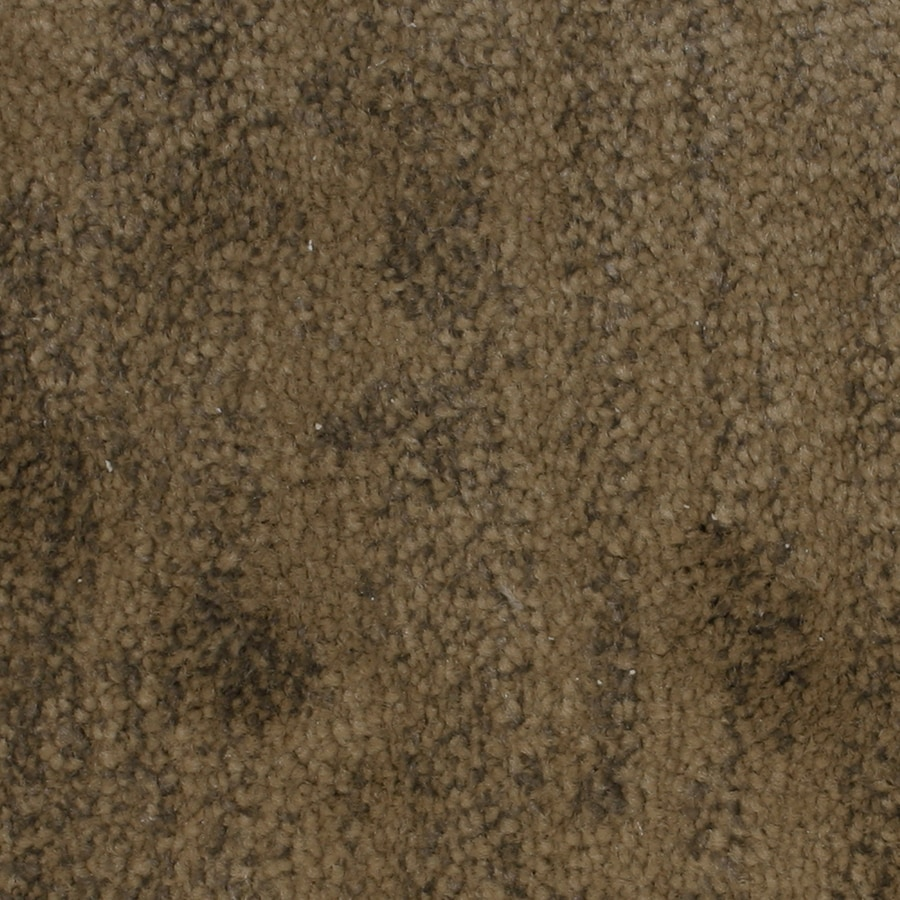 STAINMASTER PetProtect Grays Harbor Aurora Pattern Indoor Carpet