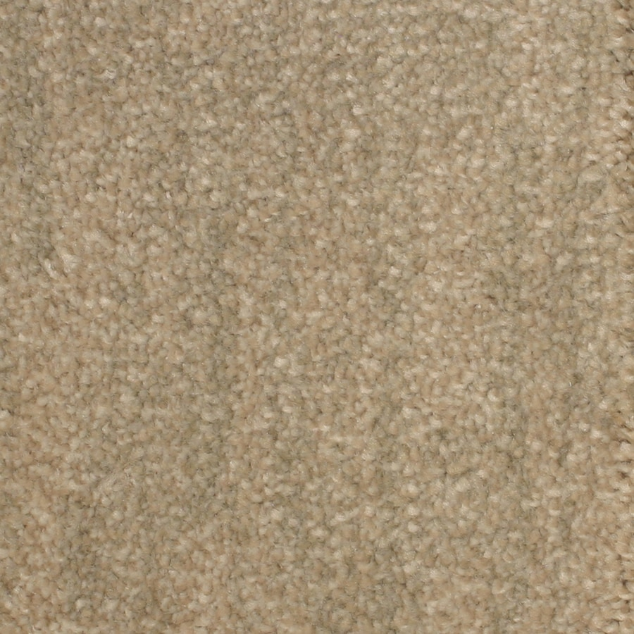 STAINMASTER PetProtect Grays Harbor 12-ft W x Cut-to-Length Bay View Pattern Interior Carpet
