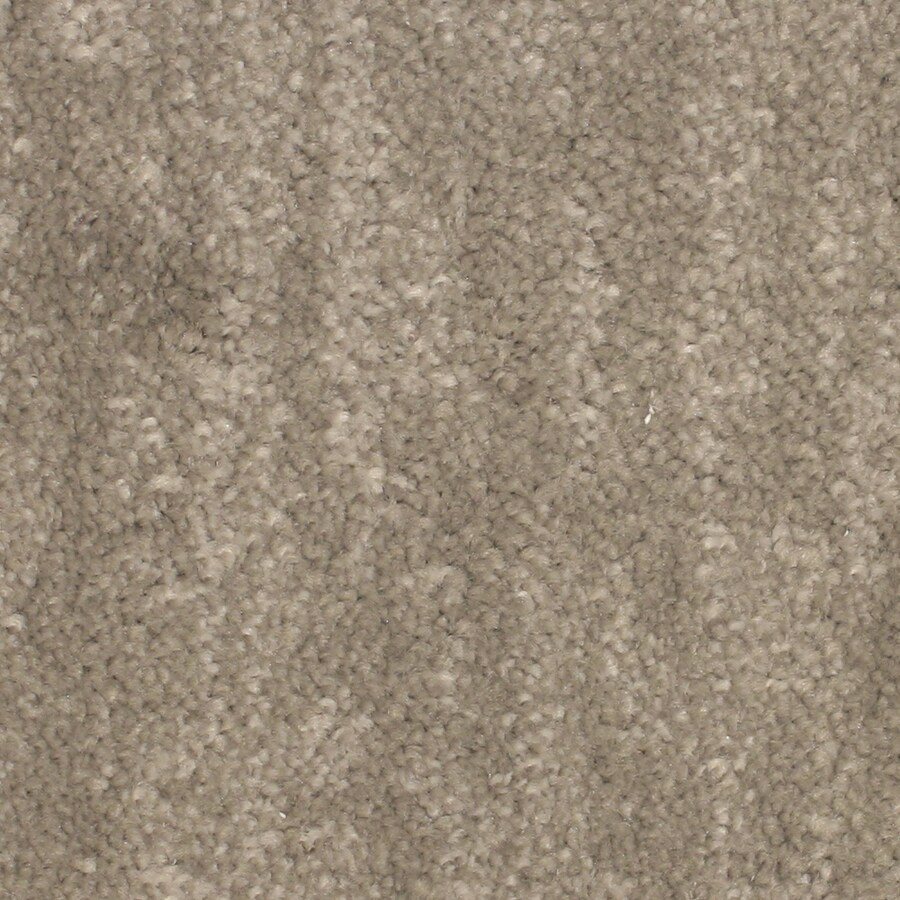 STAINMASTER Petprotect Grays Harbor Lighthouse Pattern Indoor Carpet
