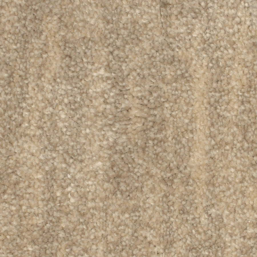 STAINMASTER PetProtect Grays Harbor Moonlight Bay Pattern Interior Carpet