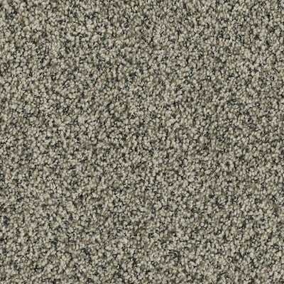 Petprotect Newbury 12 Ft Textured Interior Carpet