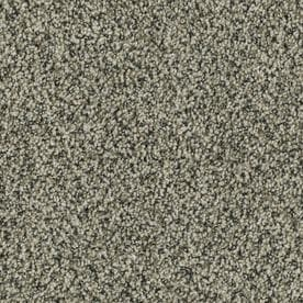 STAINMASTER PetProtect Newbury 12-ft Textured Interior Carpet