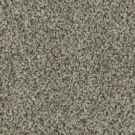Stainmaster Petprotect Newbury 12 Ft Textured Interior Carpet