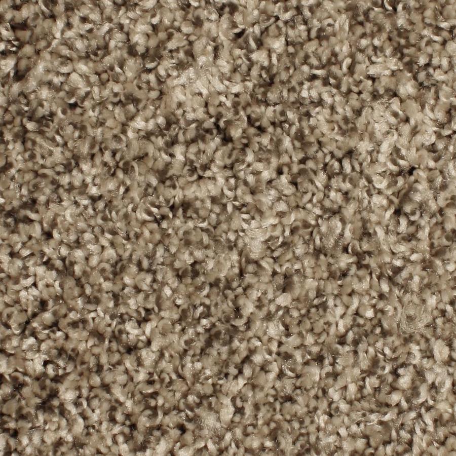 Shop Phenix Cornerstone Springhaven Outerbanks Carpet