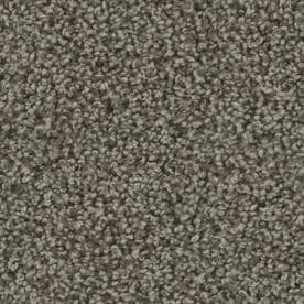 Stainmaster Carpet At Lowes Com