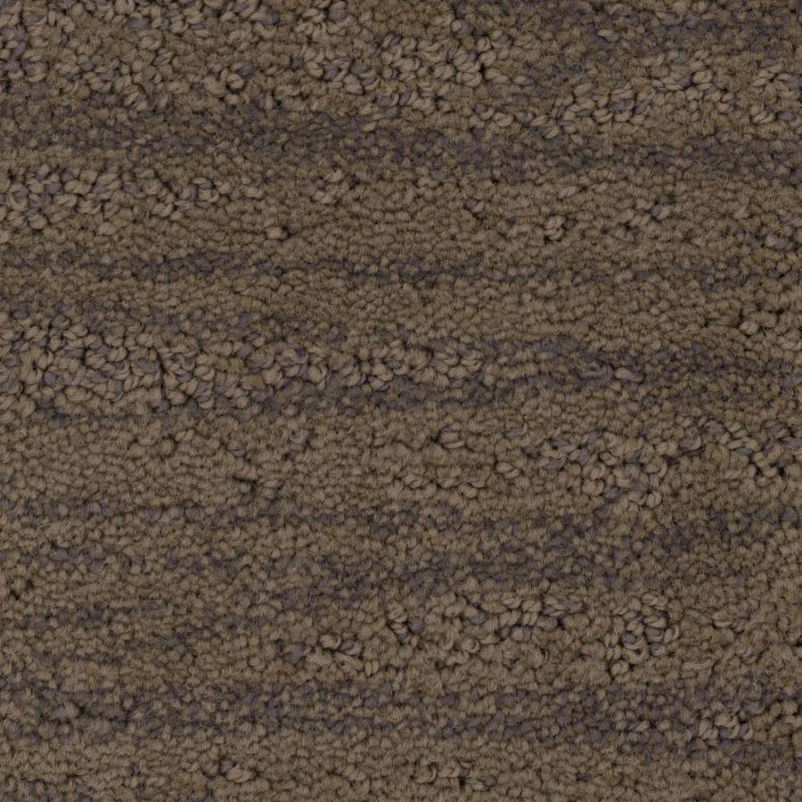 Stainmaster Petprotect Embellish 12 Ft Pattern Interior