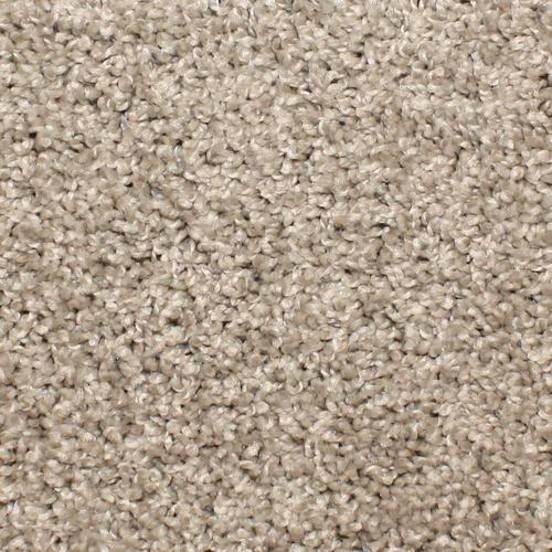 STAINMASTER Essentials Bronson Cobblestone Carpet Sample