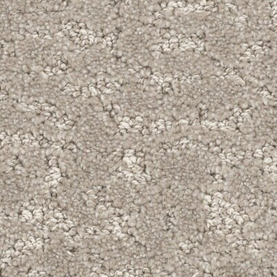 Stainmaster Petprotect Reflection Diplomat Carpet At Lowes