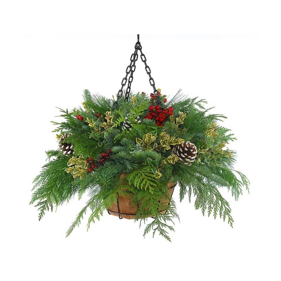 Fresh Cut Christmas Hanging Basket With Pinecones