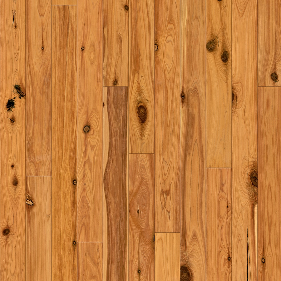 Natural Floors by USFloors Exotic 3.5-in Natural Australian Cypress Hardwood Flooring (16.41-sq ft)