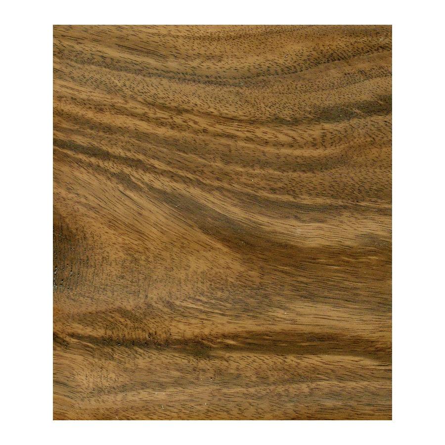 Natural Floors by USFloors Acacia Hardwood Flooring Sample (Natural)