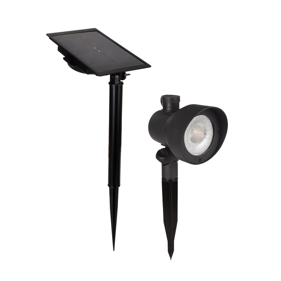 Shop Portfolio Black Solar LED Landscape Flood Light At