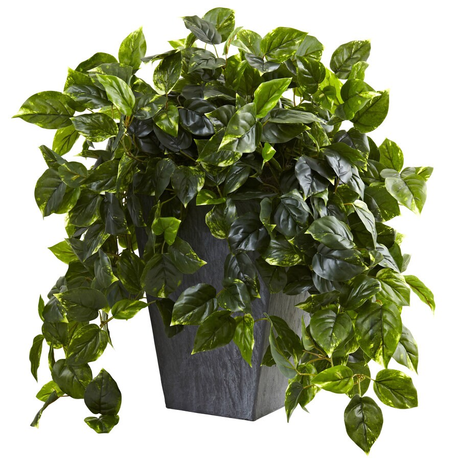 Nearly Natural 29-in Green Pothos