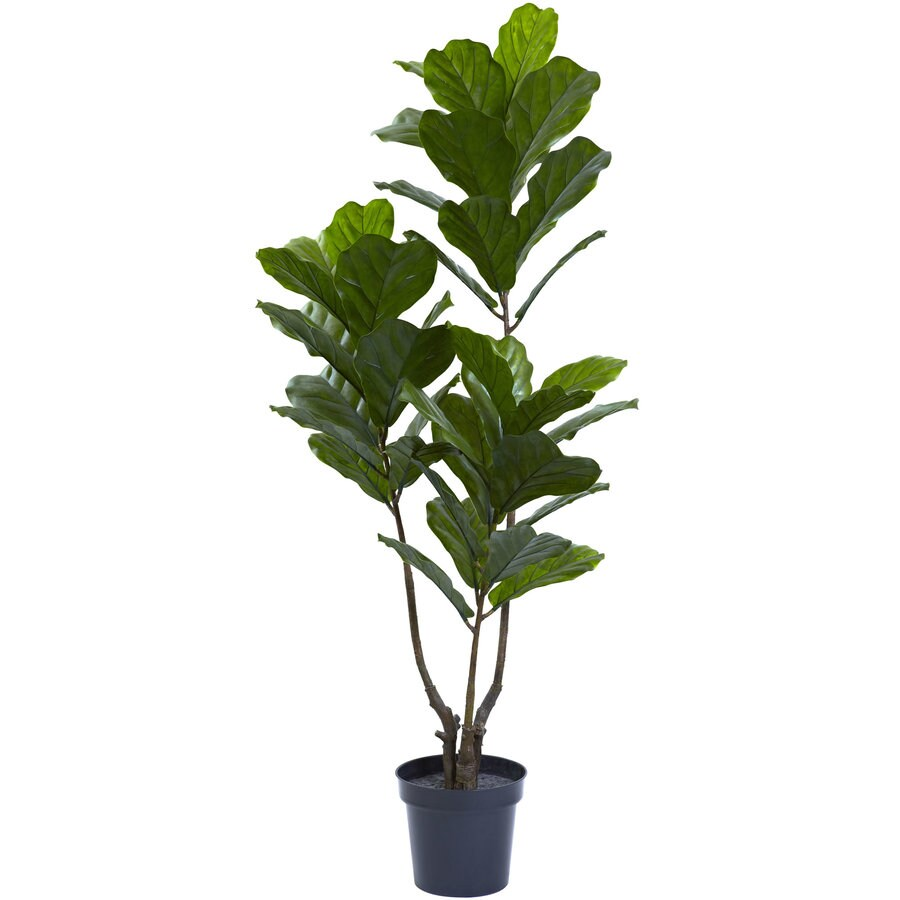 Nearly Natural 65 In Green Artificial Fiddle Leaf At Lowes Com