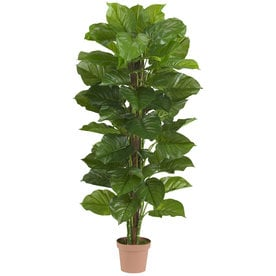 Nearly Natural 63 In Green Artificial Silk Plant