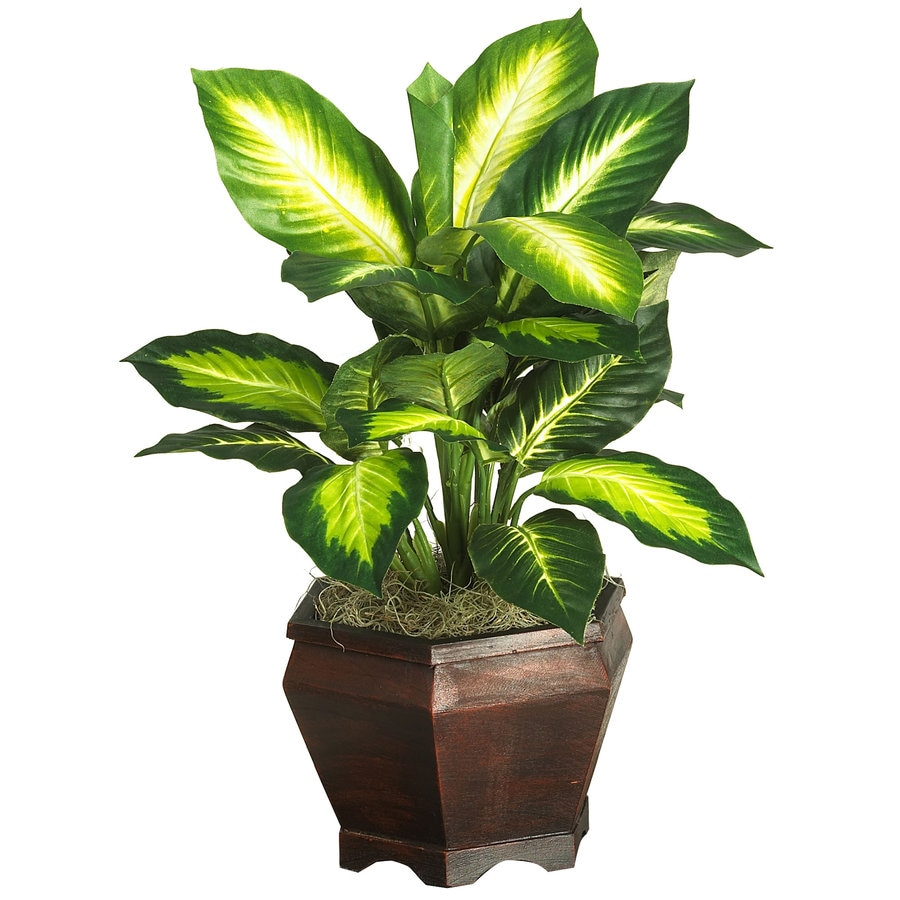 Nearly Natural 20.5-in Green Silk Plant