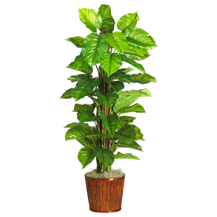 Nearly Natural 63-in Green Silk Plant