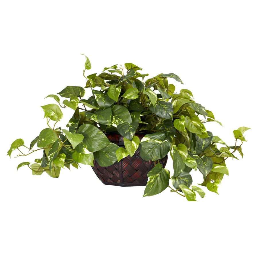 Nearly Natural 15-in Green Silk Plant