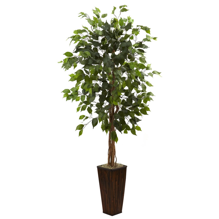 Shop Nearly Natural 66 In Green Silk Tree At Lowes Com