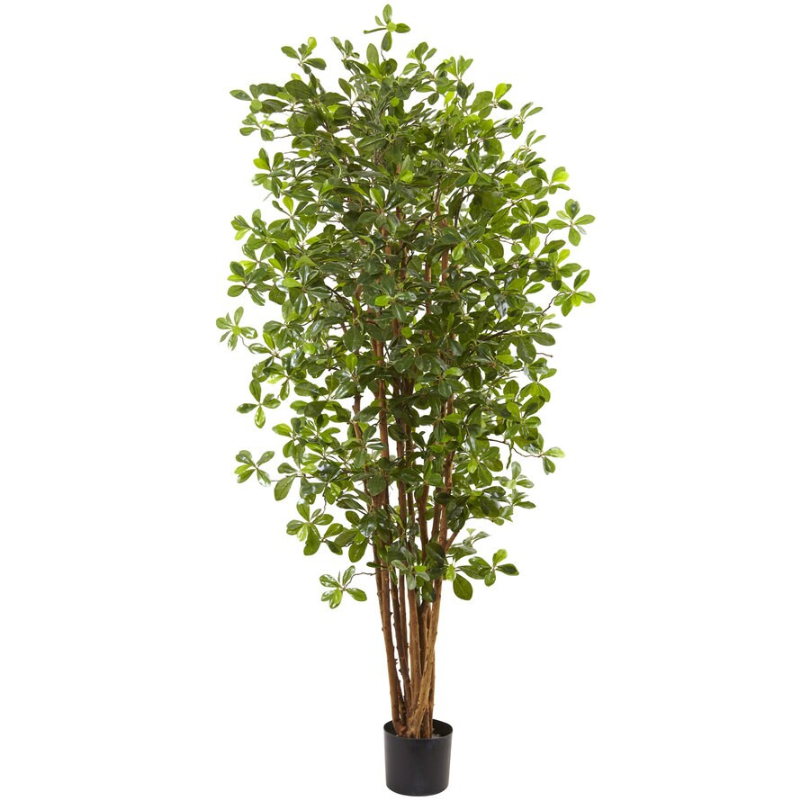 Nearly Natural 72-in Green Olive