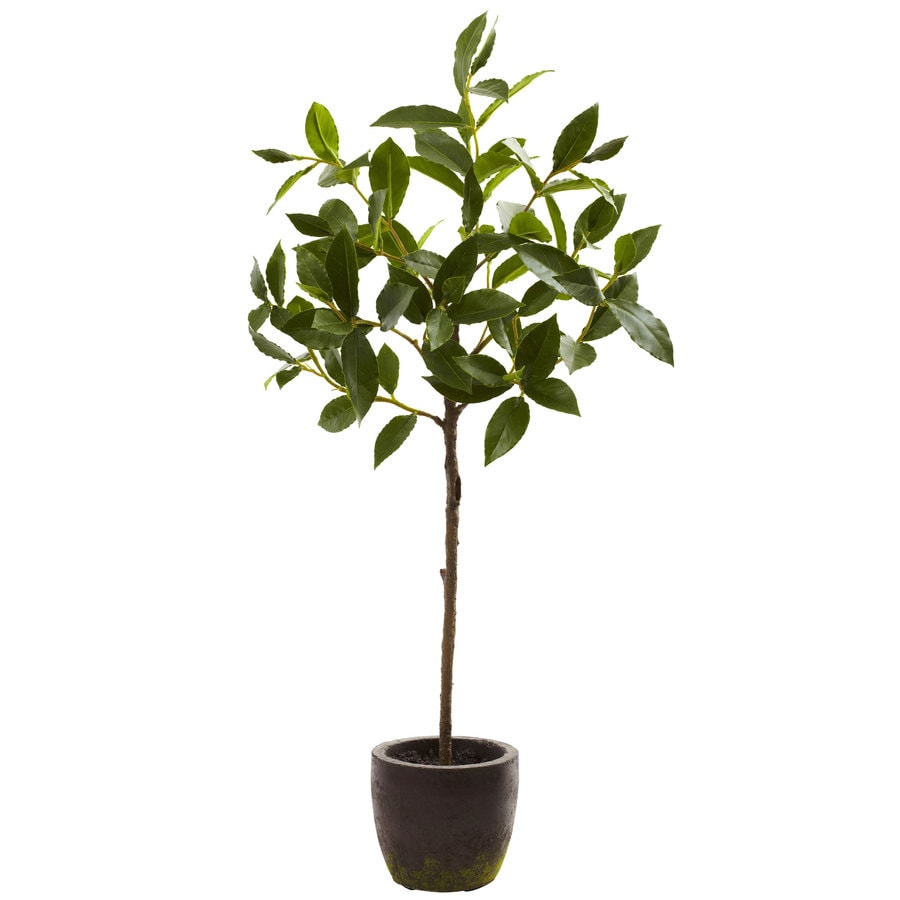 Nearly Natural 29-in Green Silk Tree