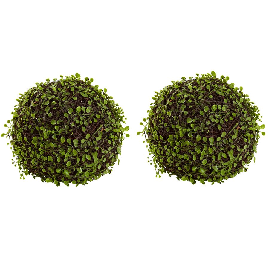 Nearly Natural 9-in Green Mohlenbechia