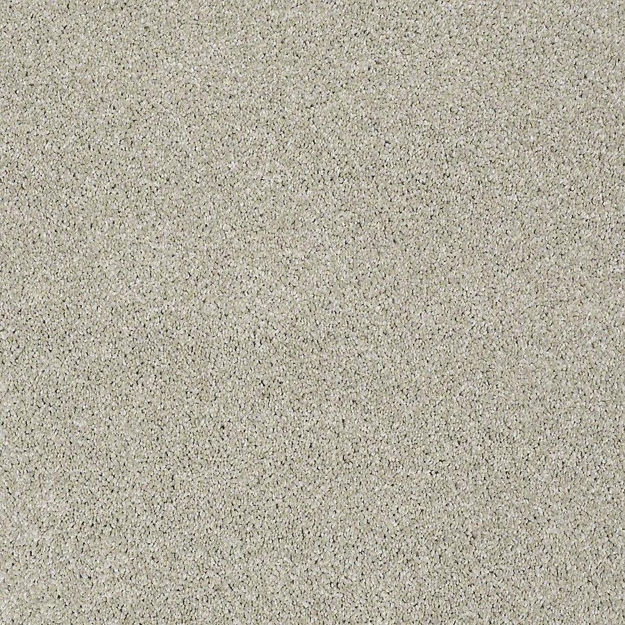 STAINMASTER Baxter II PetProtect Marmaduke Plus Carpet Sample