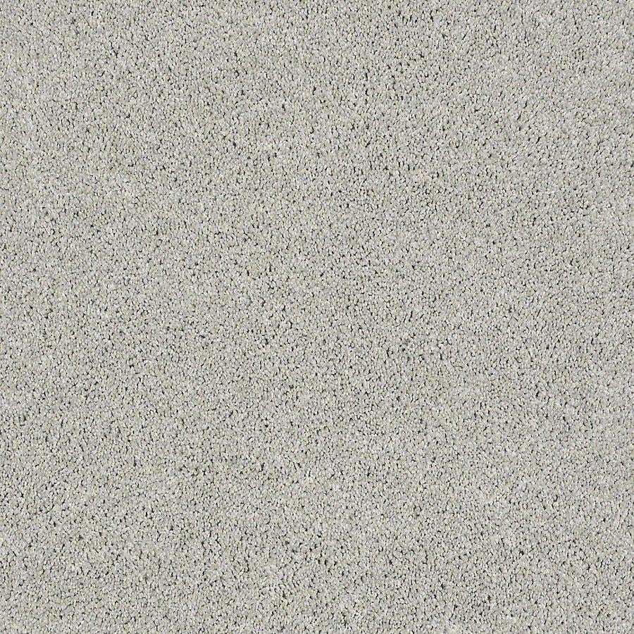STAINMASTER PetProtect Baxter II Gizmo Carpet Sample