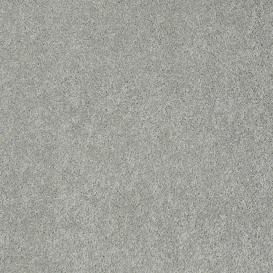 STAINMASTER PetProtect Baxter II Bobo Plush Carpet Sample