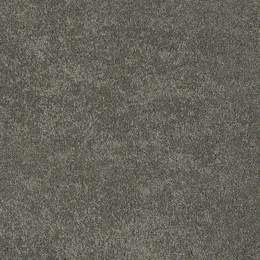 STAINMASTER PetProtect Baxter II Winston Plush Carpet Sample