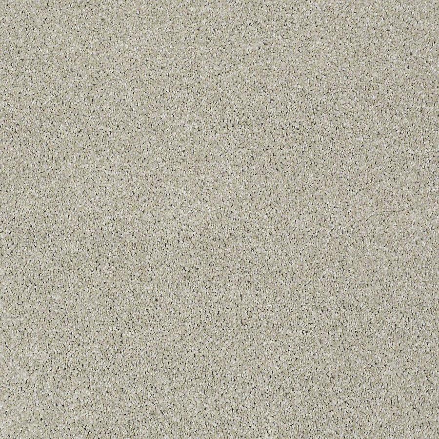 STAINMASTER Baxter III PetProtect Marmaduke Plus Carpet Sample