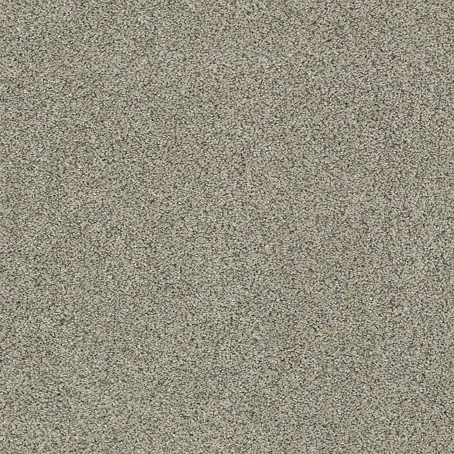STAINMASTER PetProtect Baxter III Bandit Plush Carpet Sample