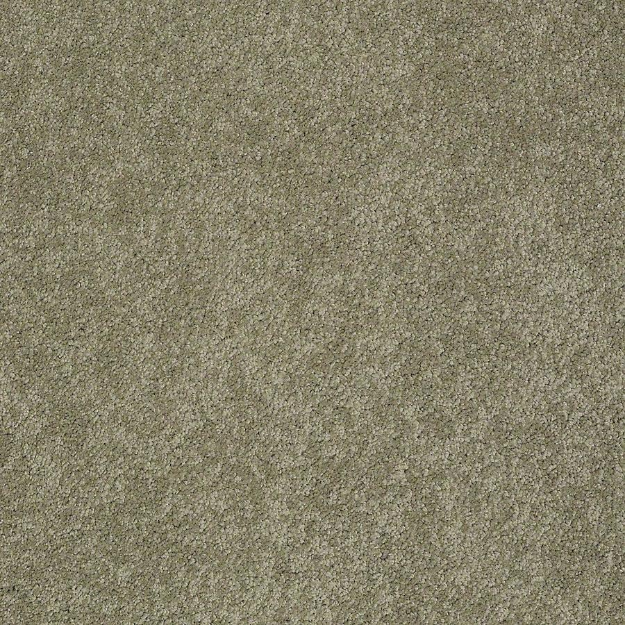 STAINMASTER PetProtect Baxter III Buddy Carpet Sample